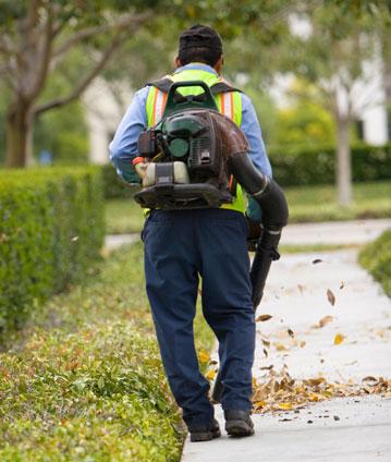 Leaf Blower Restriction Ordinances